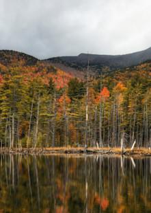 Adirondack Vista Art | Michael Sandy Photography