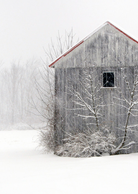Winter in Montgomery County - Michael Sandy Photography