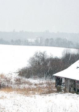 Winter in Monroe County - Michael Sandy Photography
