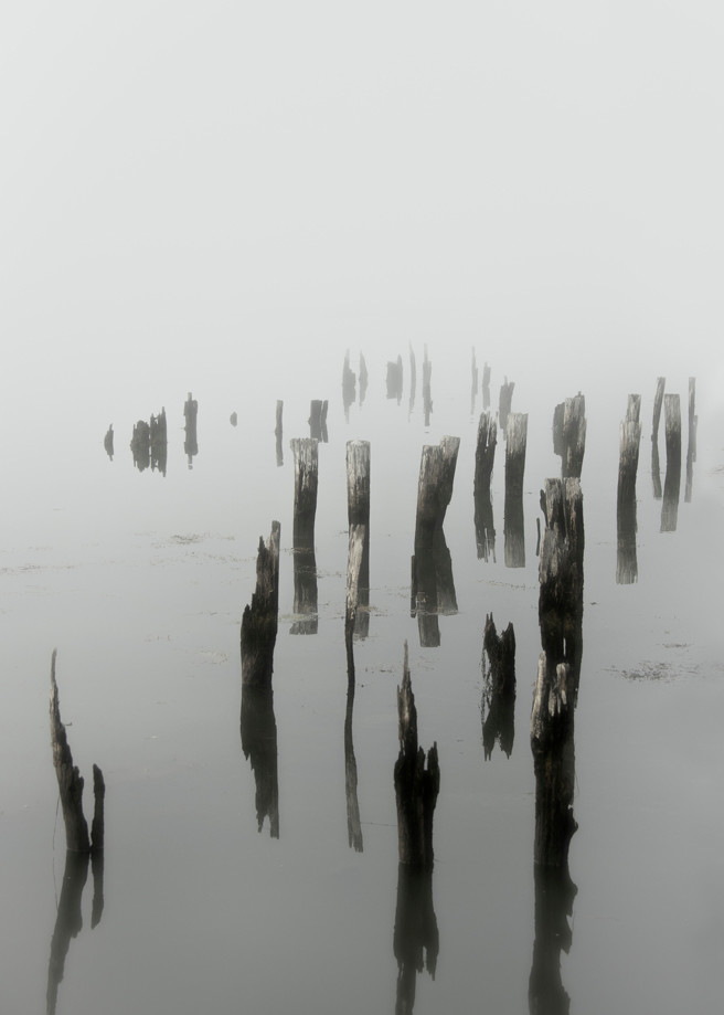Morning Fog On Sheepscot River Photography Art | Michael Sandy Photography