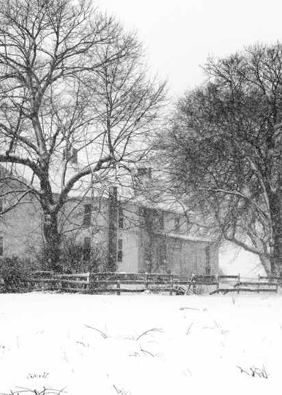 Spring Snow in Montgomery County - Michael Sandy Photography