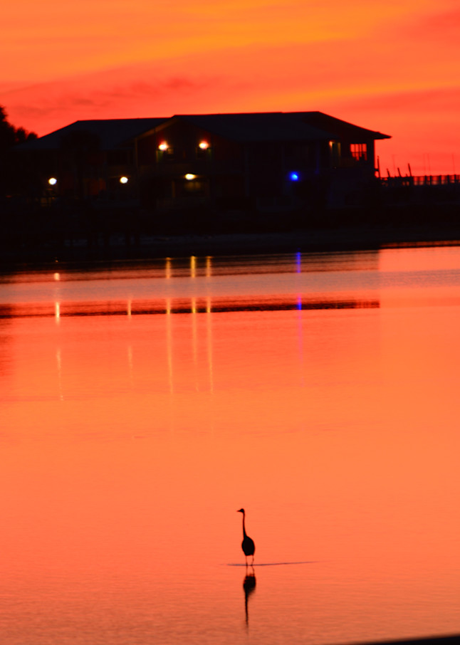 Cedar Key Sunset Art   Roost Studios, Inc.