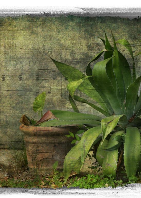 Fine Art Photog Emerald Art | FortMort Fine Art