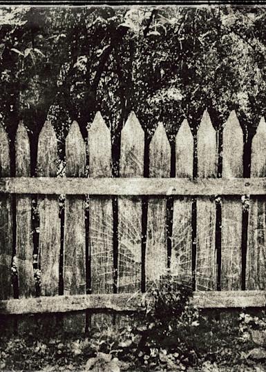 Fine Art Photog Fenced In Art | FortMort Fine Art