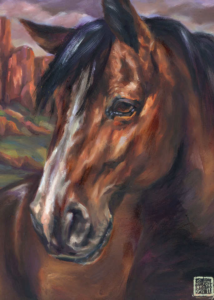 Portrait of an Arizona mustang by Ans Taylor
