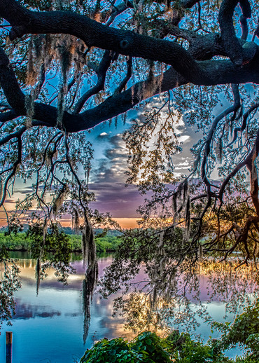 Braden Sunrise Art | Artist David Wilson
