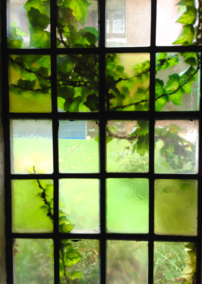 Garden Window Photography Print | Gifts For Art Lovers