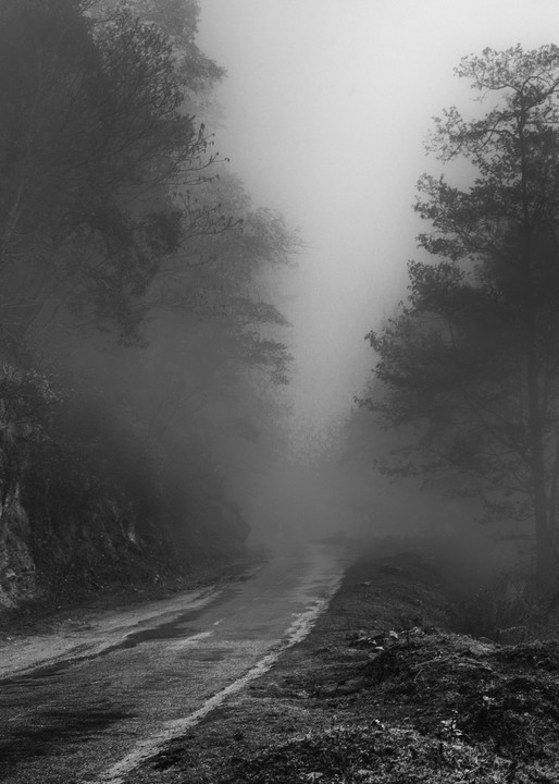 Bhutan Mystery Road | Black and White Landscape Photography