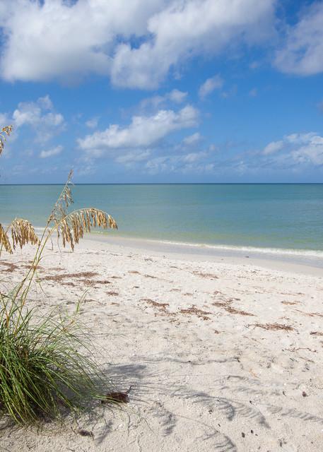 Coastal Beach - No.2