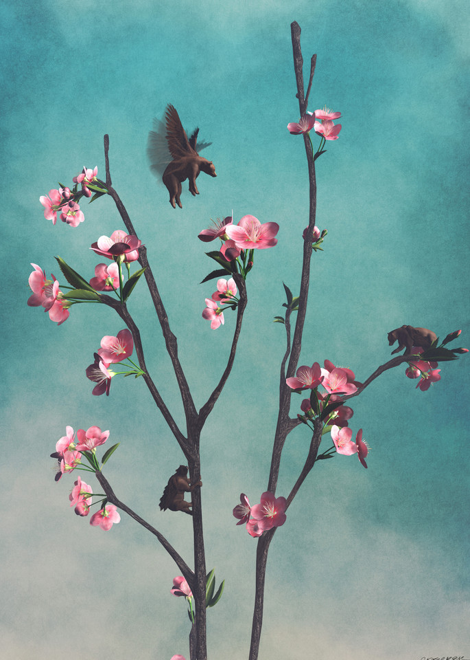 Hummingbears | Cynthia Decker