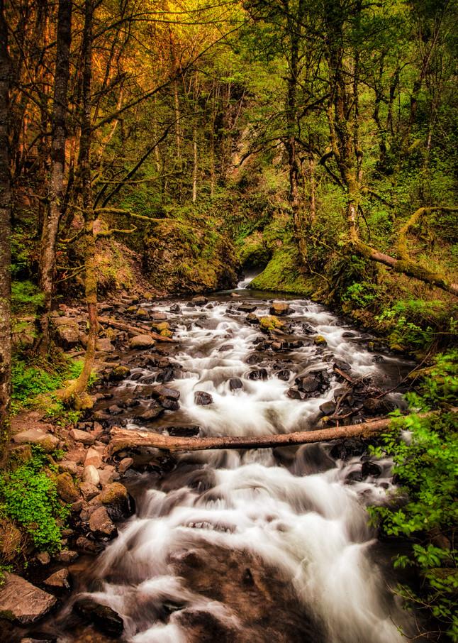Waterfall 1 Near Portland Or Photography Art | Dale Yakaites Photography