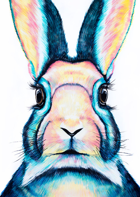 Alice in wonderland Rabbit Print