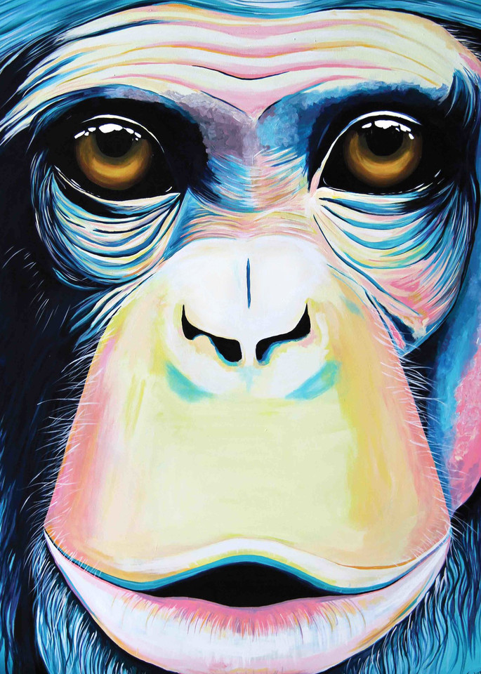 Chimpanzee Print from Animalize
