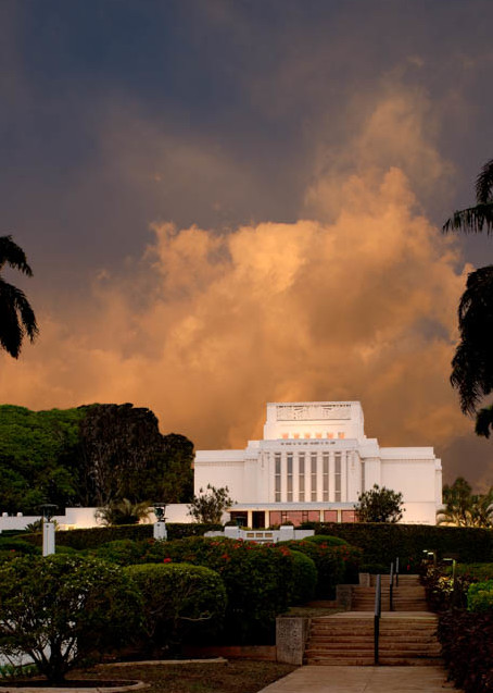 Laie Temple - Palm Trees