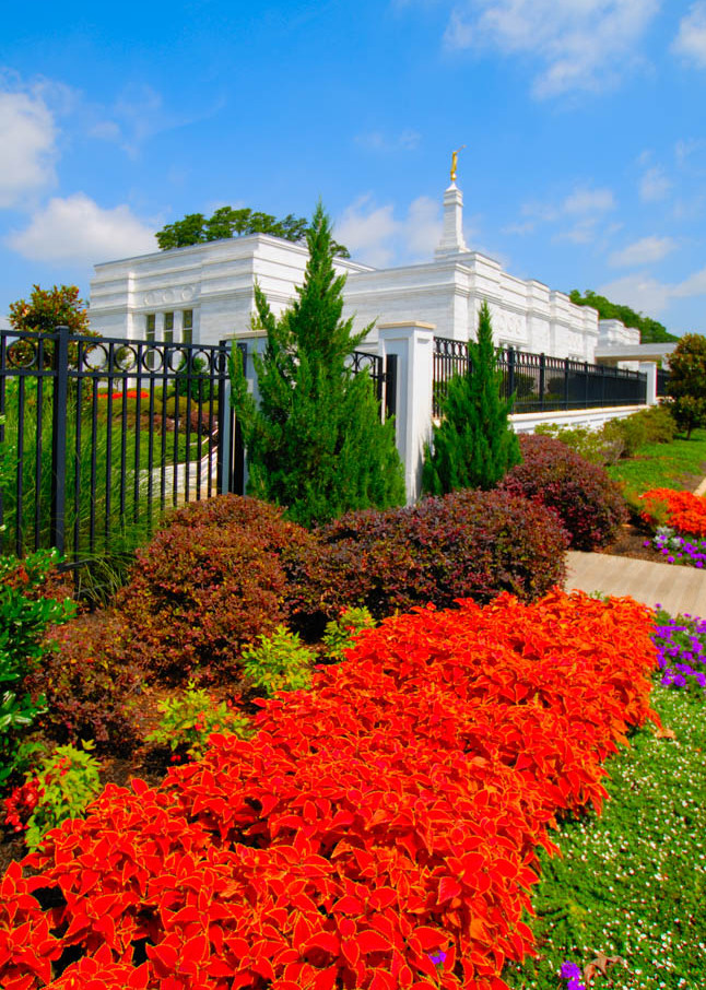 Memphis Temple - Flower by Day
