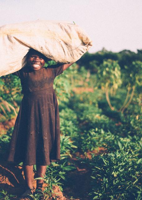 A Harvest of Joy | Kirby Trapolino Fine Art Photography