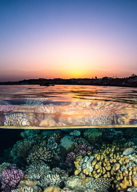 Ocean Reef Sunset for sale as a fine art photograph