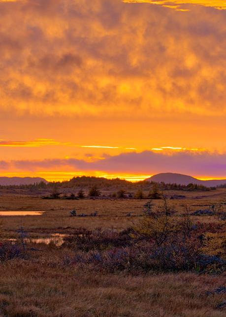 Sunset on the Bog - Burin Peninsula