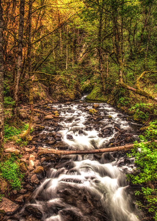 Creek Below Bridal Veil Falls Photography Art   Dale Yakaites Photography