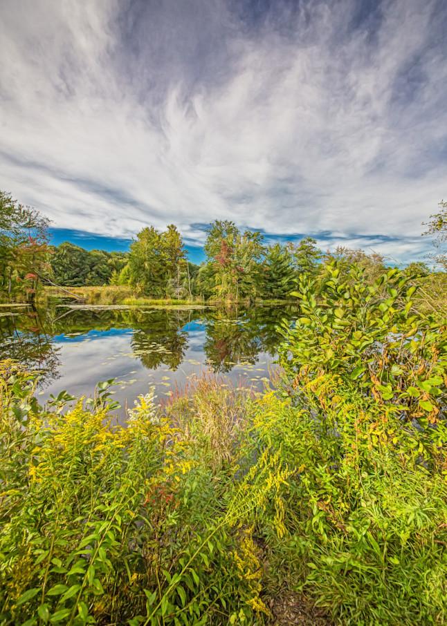 Birds Nest View Photography Art | Peter J Schnabel Photography LLC