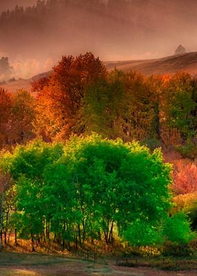 Montana landscape, fall colors