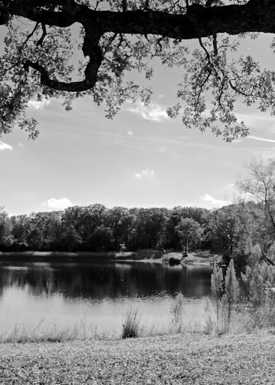 Farmland 14 Photography Art | Drone Video TX