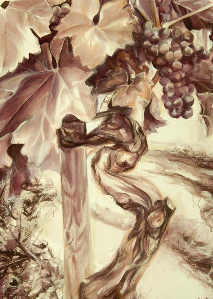 Gnarly Vine Art | Artiste Winery & Tasting Studio