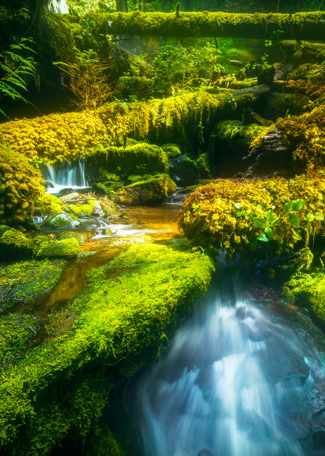 Panther Creek Grotto Photography Art   Derrick Snider Imagery