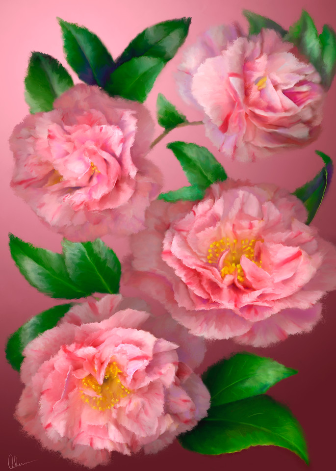 Pink Camellias metal wall art.  Aluminum Prints by the artist, Mary Ahern.