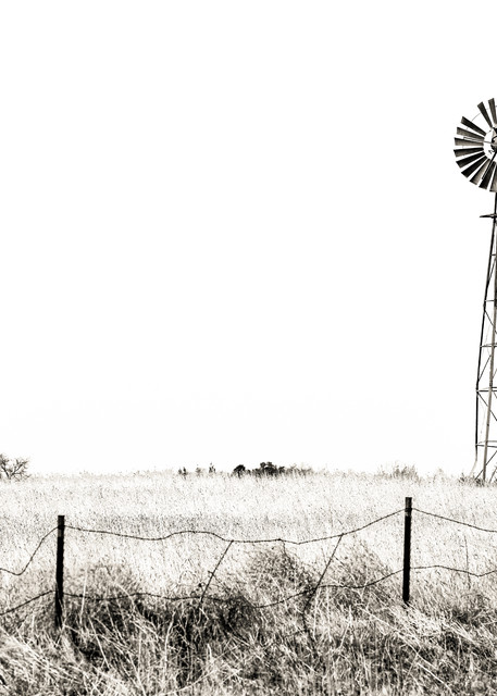 Colorado windmill photography print