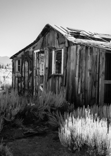 Desolation Photography Art | Leiken Photography