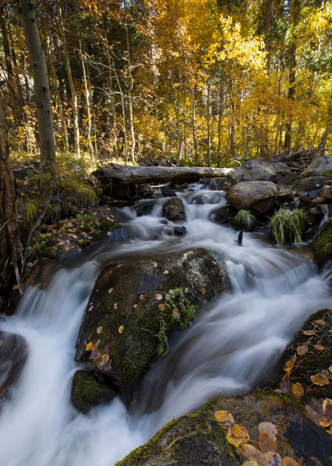 June Waterfall Portrait Photography Art | Leiken Photography