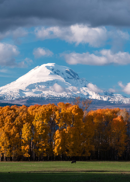 Mt Adams and Fall Colors