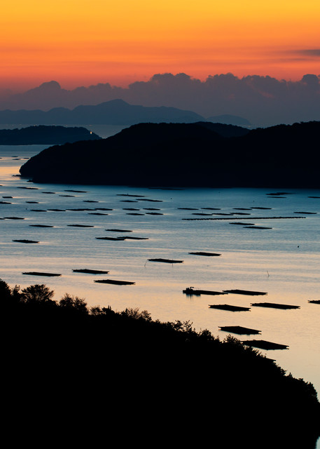 Oyster beds in Mushiake