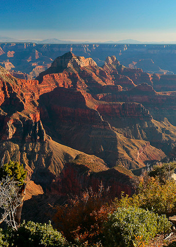 Grand Canyon North Rim Photo Print