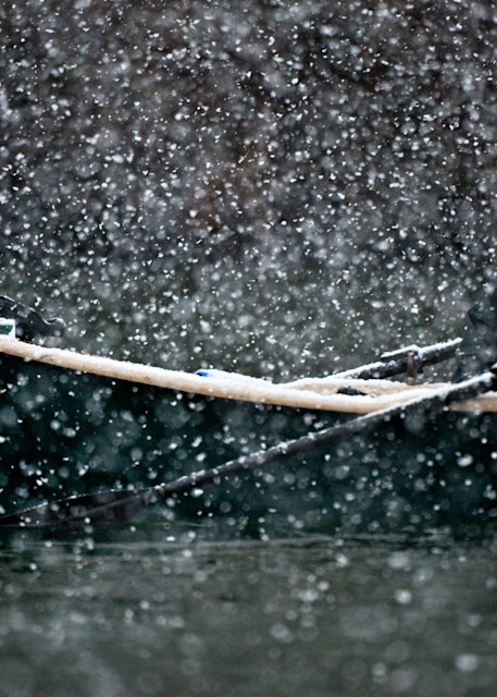Faithful in the snow