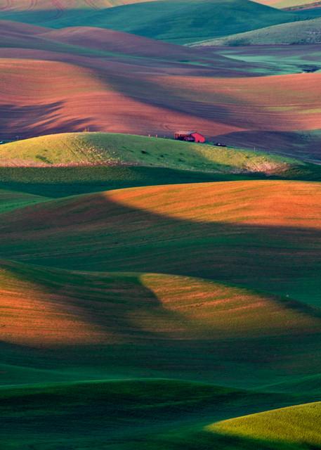 Palouse sunrise rolling hills