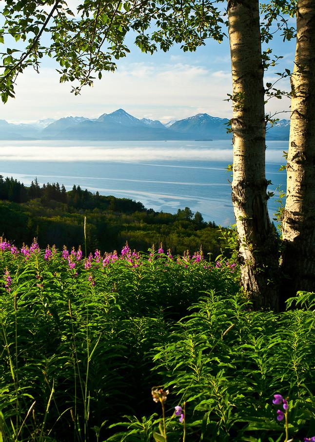 Alaska - Homer  Photo Print