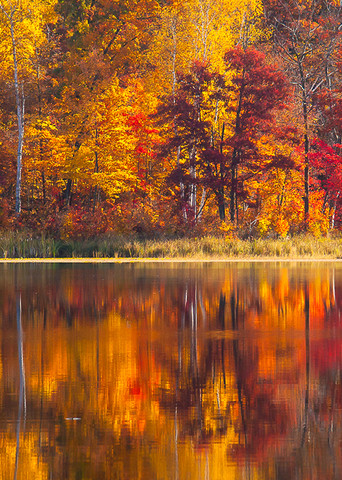Fall Reflection Pano Photo Print