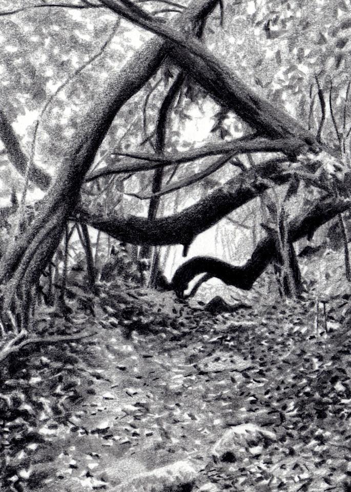 Hero's Journey, Drawings, The Art of Max Voss-Nester