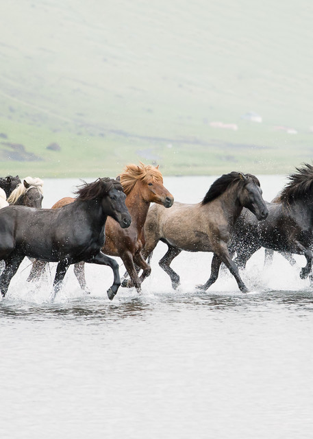 Icelandic Splash Art | Sierra Luna Photography