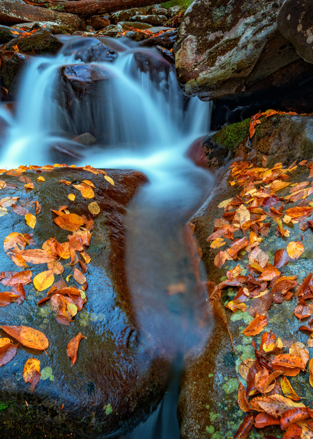 Autumn Cascade in the Smokies by Rick Berk