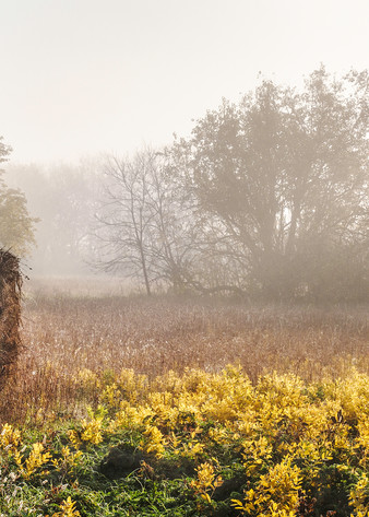 Americana color fine art photograph: Hay bales in autumn fog, by fine art photographer, David Zlotky
