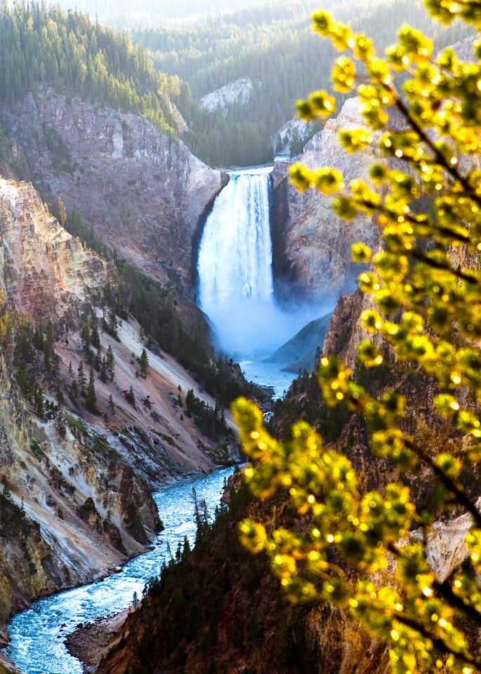 Yellowstone Falls Photography Art | Josh Kimball Photography