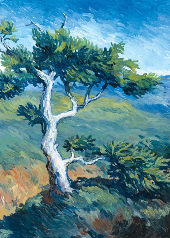 Tree On A Hill Art   Digital Arts Studio / Fine Art Marketplace