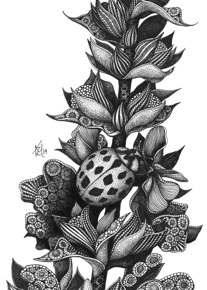 "Camouflage (Ladybug) Art | Kristin Moger ""Seriously Fun Art"""
