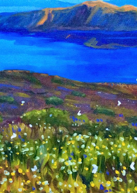 Santorini Butterflies Fine Art Print by Hilary J. England