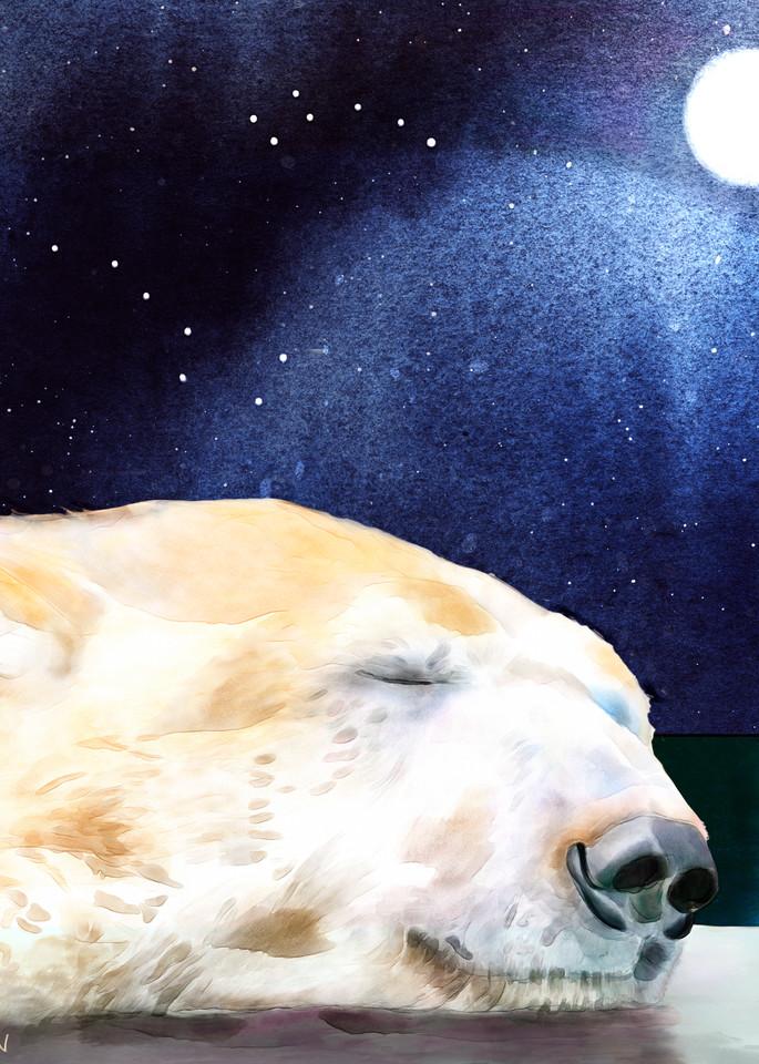 Ursa Sleeping