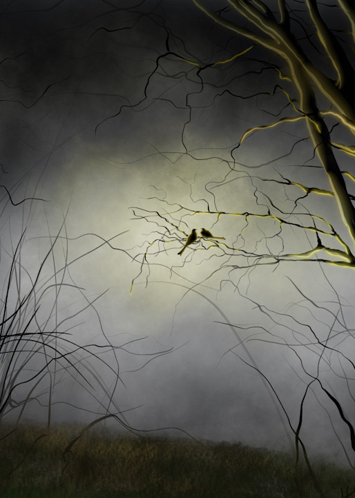 Mourning Doves in a Tree, digital painting by Holly Whiting