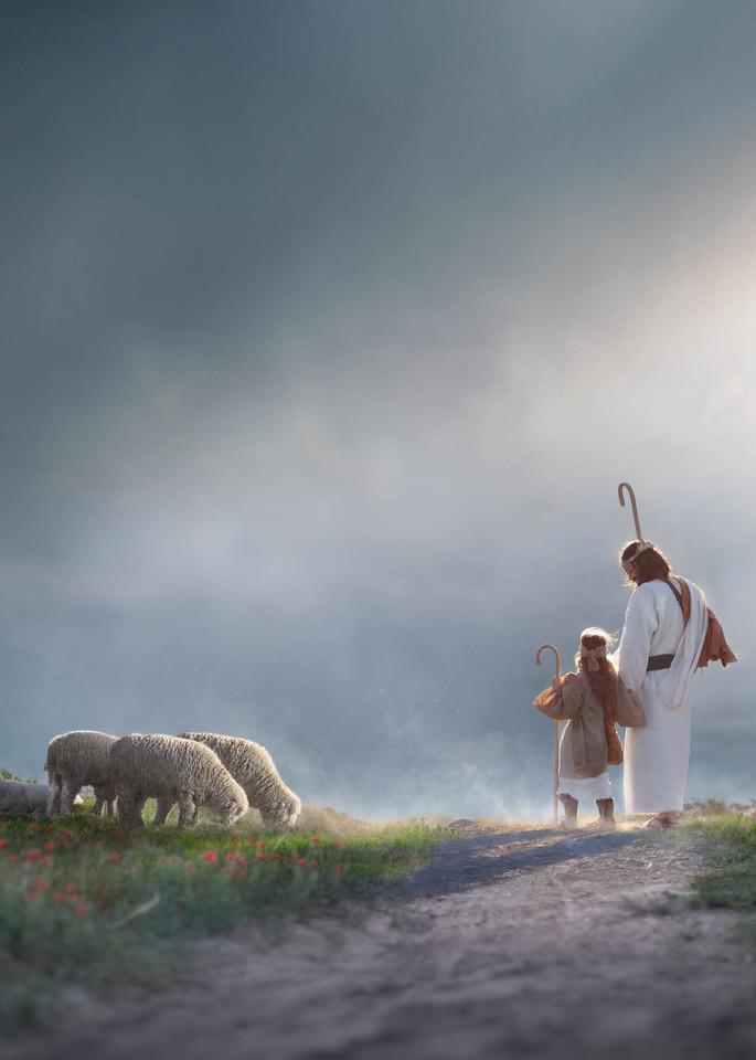 My Young Shepherd